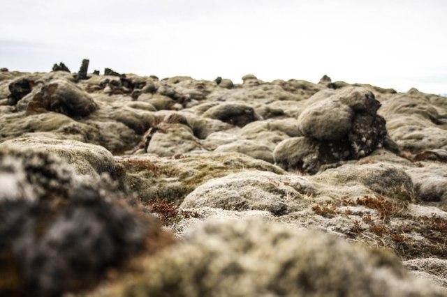 Eldrhaun, Iceland, lava fields, kids